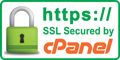 Website SSL secured by cPanel 256-bit data encryption
